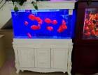无锡鱼缸安装 鱼缸清洗鱼缸维护鱼缸护理修理鱼缸