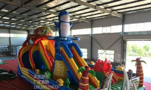 天蕊游乐充气城堡大型充气滑梯儿童蹦极旋转飞车沙滩池钓鱼池碰碰