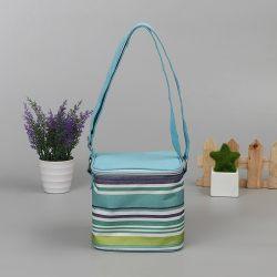 樂東保溫袋包裝設計定制廠家供應商