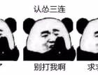 香港云服务器PING检测