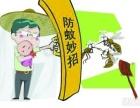 专业灭白蚁公司,广州治白蚁 防白蚁 专业上门处理白蚁