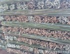 北京竹竿,竹片,菜架竹,园林绿化支撑杆