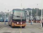 专业培训A1大客、A3公交、B1中客、B2大货