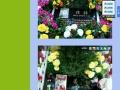 离你最近价格最低服务最好的宠物火化安葬服务