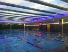 茶园恒温游泳池,室内游泳馆,游泳健身价格优惠