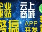 网站、APP、商城、阿里云腾讯开发商。