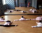 上海宝山区高境镇社区文化活动中心舞蹈培训
