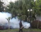 专业除虫灭鼠灭蟑、白蚁防治、家庭灭鼠灭跳蚤