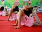 西安明光路附近哪有教小孩子跳舞的地方西安北郊少儿舞蹈培训