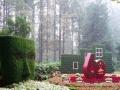 绿植租摆、花卉租摆、园林绿化工程,来电有惊喜