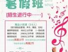 朝阳区丰台区舞蹈声乐钢琴培训学习暑假班报名中!
