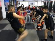 少儿散打培训班-少儿武术学习班-少儿防身班
