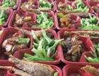 济宁快餐提供鸟巢及周边公司、单位团体午餐外卖,让您