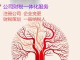 惠州惠城水口河南岸公司代理记账服务,企业财税咨询