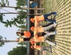 宁河- 七里海海清公路9号 导航查询信泽生态园