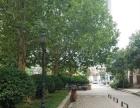 托斯卡纳西门临街小商铺 28平售75万 年租金5万