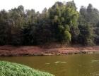 野营、钓鱼、踏青、田间体验