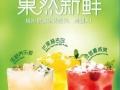 嘉兴蜜菓奶茶店投资创业方案加盟