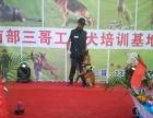 四川南充南部三哥工作犬培训基地 德牧 马犬 金毛 拉布拉多