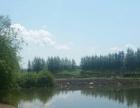 哈尔滨市宾县经建乡小毛家 其他 180000平米