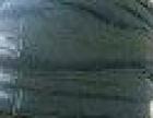 三河上林骨功夫專治各種風濕、筋骨病癥