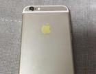 高价回收 iPhone 6 6S 7 7plus苹果手机