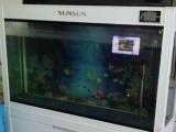鱼和1.2米上滤白色森森鱼缸,液晶显示屏,9新