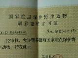 唐山金方鹦鹉养殖有限公司