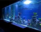 洋清水族亚克力鱼缸制作-设计大型鱼缸厂家-观赏鱼缸定做