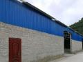 天晟国际, 新体育场周围 仓库 1100平米