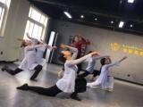 周口成人舞蹈培训周口古典舞培训周口钢管舞培训班联系电话