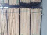 辐射松无节板材,辐射松有节板材,白松木龙骨,新西兰松木烘干材