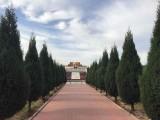 石家庄个陵园是中国百强公墓之一