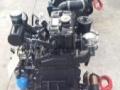 十年大厂专业生产双缸柴油机两缸发动机2110带皮带轮28kw出口