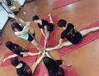 南昌专业钢管舞,学钢管舞培训班