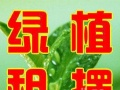 南通绿植花卉租赁、绿植销售、专业室内绿化、价格优惠