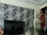 银斑龙猫 公 1500