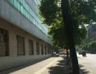 建设西路(原金丹集团) 仓库 450平米 出租