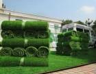 北京仿真草坪价格北京便宜家草皮出售