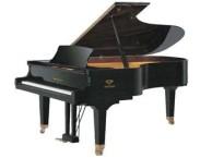 北京西城钢琴专业培训