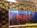 北京清洗鱼缸长期养护换水托管式鱼缸一系服务