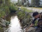 郴州仰天湖较有特色的农家乐