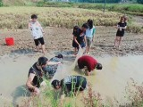 长沙端午人少好玩项目多的农家乐