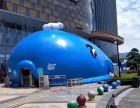 鲸鱼岛儿童游乐园熊猫岛出租出售夏季儿童娱乐选着十万海洋球共享