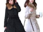 2013冬装新款 简约百搭经典中国结韩版时尚修身中长款女士羽绒服