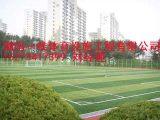 常德安乡县人造草足球场建设施工性价比高湖南一线体育设施工程