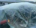 杨木原木解冻机木头木材解冻机化冻机烘干机视频厂家