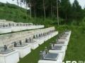 铁岭天麟山墓园是民政局批准的合法公墓