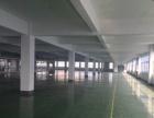 高新区繁华大道1300方框架一楼厂房出租