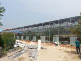 薄膜温室,山东智能玻璃温室供应